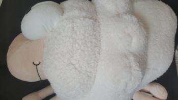 corps du mouton nuage